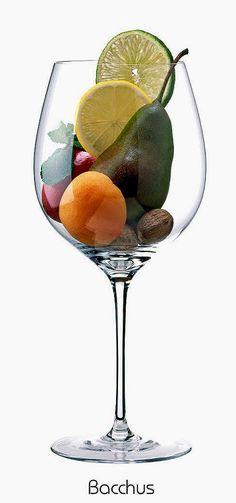Bacchus (white) | Aromas of lime, lemon, apple, nutmeg, pear, lemon balm, apricot | Palatinate, Germany