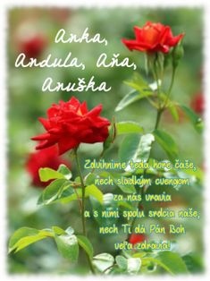Birthday Wishes, Herbs, Rose, Flowers, Plants, Texts, Christians, Special Birthday Wishes, Pink