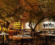 interior treees-   Google Image Result for http://indecora.com/wp-content/uploads/2012/08/100-year-old-olive-trees-garden.jpg