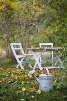 Door je tuinmeubelen aan het einde van de zomer of het begin van de herfst schoon te maken, zorg je ervoor dat ze er in de lente weer mooi en fris uitzien. Hieronder geven we je een paar basis tips waarmee je eenvoudig jouw tuinmeubelen schoonmaakt voordat het gure weer van de herfst en winter aanbreken. 1. Tuinkussens Zorg ervoor dat de tuinkussens schoon en vooral droog zijn voordat je deze opbergt. Dit voorkomt dat ze terwijl ze ergens binnen … Lees meer...