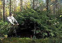 Tapionpöytä. Muinainen suomalainen eli metsän keskellä. Korpi on ollut esivanhemmillemme ruuan ja työvälineiden antaja, suojapaikka vainolaisen verikoiria vastaan ja pyhyyden ja hiljentymisen tyyssija. Vieläkin moni suomalainen kokee metsän keskellä ainutlaatuista sielullista levollisuutta. Kansanperinteessä erotetaan usein pihapiiriä ympäröivän maan haltija viljelemättömien … Jatka lukemista →
