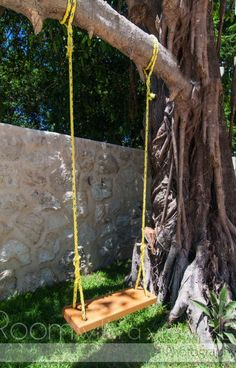 Tree swing in a Playa del Carmen home