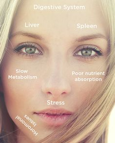 If you have found this blog post, there is a good chance you are wondering what caused your melasma. Perhaps this can help. There is an ancient practice known as face mapping that is rooted in Ayurvedic teachings which suggest skin issues on the face are actually caused by internal issues and before the skin…
