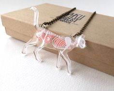 Tiddles is not looking so hot....    This necklace features a cat skeleton and internal organs (complete with a mouse in the stomach) floating