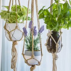 Sencillas plantas colgantes para conseguir estar zen en casa Traditional furniture can produce a room pop with persona. Diy Crafts Hacks, Diy Home Crafts, Garden Crafts, Diy Crafts To Sell, Rope Crafts, Garden Projects, House Plants Decor, Plant Decor, Diy Para A Casa