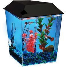 Aqua Culture 1 Gallon Starter Corner Aquarium Kit With Light Hood