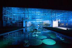 L'lluminazione celebrativa della prima settimana di apertura del Giardino della biodiversità