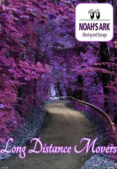 Beautiful purple forest Road to somewhere Nature photography Pathways, Amazing Nature, Belle Photo, Pretty Pictures, Amazing Pictures, Beautiful Landscapes, Beautiful Places, Amazing Places, Beautiful Flowers