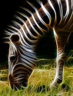 Striped Fractal Photograph by Ricky Barnard