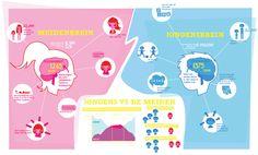 infographic-hersenen-1.png