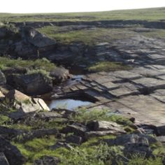 Nature in Finnmark