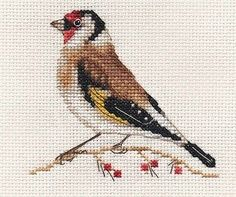 GOLDFINCH~ Garden Bird ~ Full counted cross stitch kit with all materials