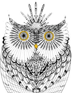 owl by Noah of Mustribe