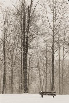 Original art for sale at UGallery.com | The Cold Seat by Dale O'Dell | photography | 24' h x 16' w #nature #photography #art