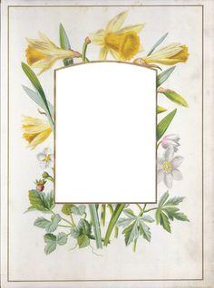Vintage Floral Photo Album Frame ~ Zibi Vintage Scrap