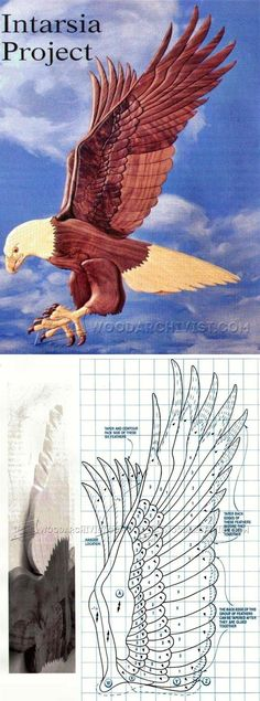 American Eagle Intarsia Patterns - Intarsia Projects, Tips and Techniques | WoodArchivist.com