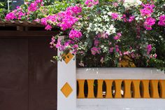 Vivid and vibrant Goa – a moodboard inspired by the seaside streets of Indias' Goa by Goa, Mood Boards, Different Styles, Seaside, Vibrant, Outdoor Structures, Inspired, Create, Interior