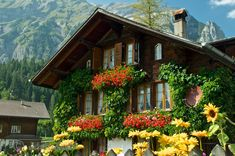 Swiss Chalet with flowers, Kandersteg, Bern