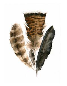 Found Feathers Archival Print nature art par amberalexander sur Etsy, $20,00