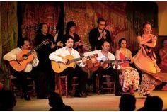 Flamenco show in Madrid. Café de Chinitas