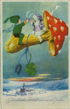 .amanita muscaria mushroom ride