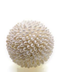 Take a look at this White 5'' Shell Bubble Orb by Accent Décor on #zulily today!