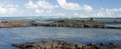 Kapoho Tide Pools - Pahoa, Big Island, Hawaii - Natural Hot Tubs and Tidal Ecosystems
