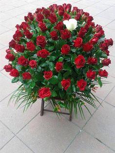 """""""Radije bih ruže na"""