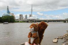 https://flic.kr/p/x96nxD   Winnipeg #mascot #mascotte #travelingmascot #travellingmascot #DexterLEcureuil #DexterTheSquirrel #peluche #stuffedanimal #Canada