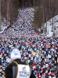 Vasaloppet, the annual skiing contest held in March in Dalarna, Sweden. In 2014 more than skiers participated. Skiers, Cross Country Skiing, Life Goals, Vikings, Travel Photography, March, Homeland, Holiday Decor, Countries