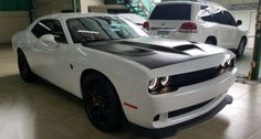 Rush Sale Muscle Car
