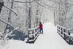 #winter, #Ice, #photography