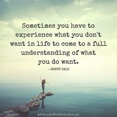 Sometimes you have to experience what you don't want in life to come to a full understanding of what you do want. Mandy Hale