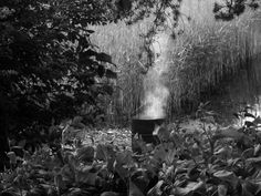 Portfolio Multimedeia: Mustavalkoisia kuvia Zombie Walk, Ex Libris, Black And White Photography, Bond, Artwork, Black White Photography, Work Of Art, Auguste Rodin Artwork, Artworks