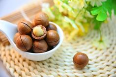 Red light: Macadamia nuts are never OK for dogs to eat, according to WebMD. (Photo credit: Pixabay)