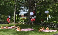 Ladybug picnic birthday