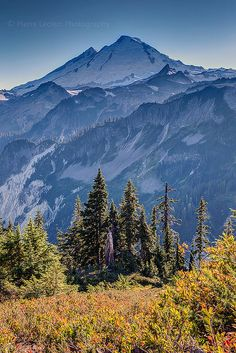 The Morning News: A Plane Is Missing Near Mount Baker, and Atticus Finch Is Racist Mountain Art, Mountain Landscape, Washington State Parks, Senior Trip, Landscape Pictures, Heritage Site, Nature Scenes, Countryside, The Good Place