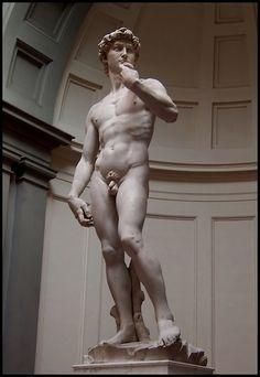 El David es una escultura de mármol blanco de 5,17 metros de altura y 5.572 kilogramos de masa, 1501 y 1504 por encargo de la Opera del Duomo de la Catedral de Santa María del Fiore de Florencia.
