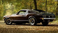 Ford Mustang Wallpapers Hd Resolution As Wallpaper HD