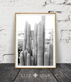 Print 88 is a contemporary downloadable print, featuring a black and white cactus photography.  Its as easy as 1, 2, 3... download, print and frame!