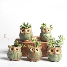 Creative Ceramic Owl Shape Flower Pots for Fleshy Succulent Plant Animal Style Planter Home Garden Office Decoration Product Descrption: Mini Flower Pot Material:Ceramic Package pcs mini flower pot Features: Creative Cute Owl Design Fashion Home Garden Ceramic Plant Pots, Ceramic Flower Pots, Ceramic Owl, Flower Planters, Planter Pots, Glazed Ceramic, Garden Planters, Indoor Garden, Bonsai Garden