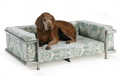 Bowsers Moderno Pet Bed   http://www.cybermarket24.com/bowsers-moderno-pet-bed/