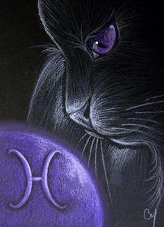 Cat Art...=^. ^=... ❤...Black Cat Pisces by Artist Cyra R.Cancel...