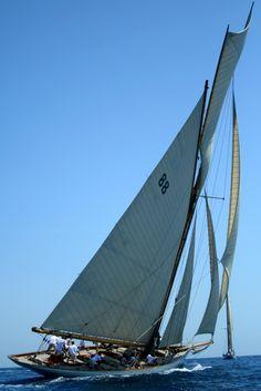 Voile dans le Golfe d'Ajaccio Ajaccio Corsica, Sail Away, Vacation Destinations, Sailing Ships, Boat, Paradis, Button, Dolphins, Veil