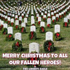Holiday wreaths adorn tombstones during Wreaths Across America's anniversary, Saturday, Dec. at Arlington National Cemetery in Arlington, Va. (AP Photo/Luis M.