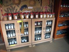 Create a Seed Bank for Your Homestead