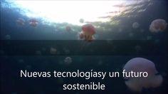 Energias Verdes y Ecologicas Nuevas tecnologias para alimentos naturales...