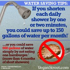 Water Saving Tips - something to think about