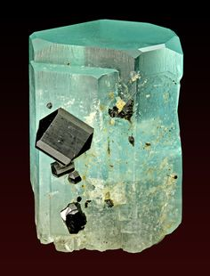 Aquamarine with Schorl - Namibia var Tourmanline (Sodium Iron Aluminum Boro-silicate Hydroxide) Minerals And Gemstones, Crystals Minerals, Rocks And Minerals, Stones And Crystals, Gem Stones, Cool Rocks, Beautiful Rocks, Mineralogy, Rocks And Gems