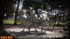 Fight back #Arte #ArteTaurino